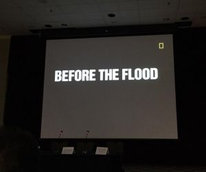 beforetheflood2